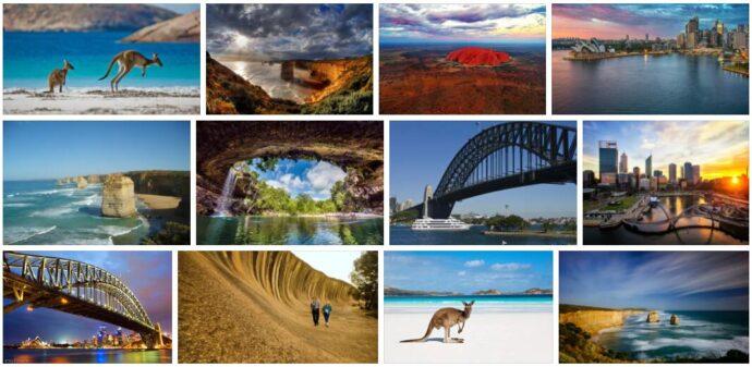 Oceania Wildlife